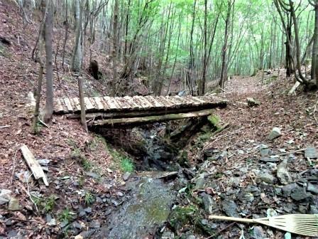 みんなの森活動日記_d0105723_17174213.jpg