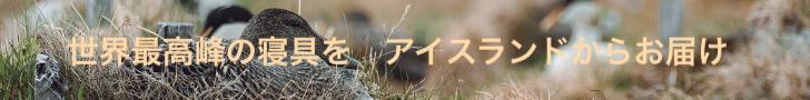 世界至高の寝具になるアイスランドのアイダー鴨に会った_c0003620_00494737.jpg
