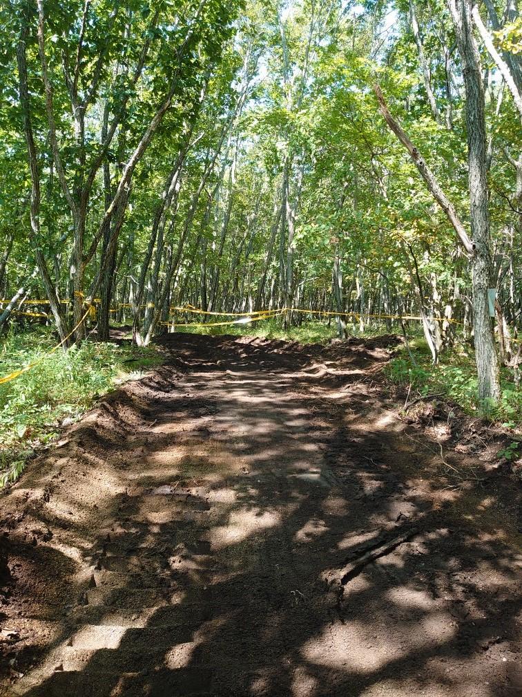 林間コースと桂コース_e0183255_00335011.jpg