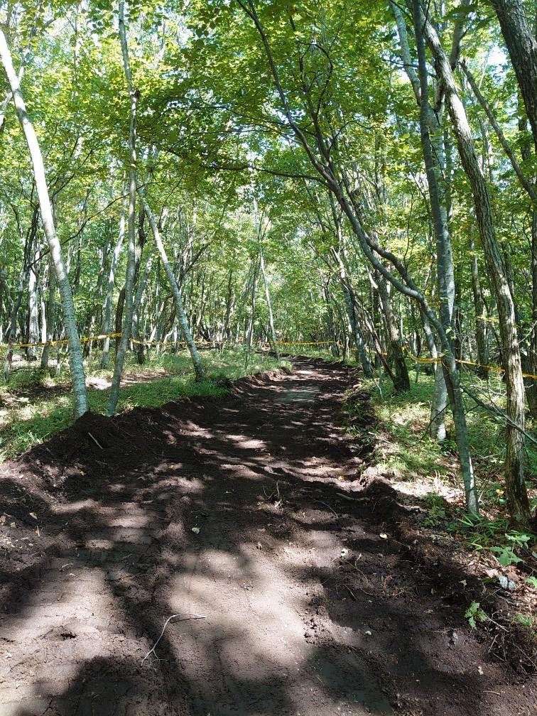 林間コースと桂コース_e0183255_00340457.jpg