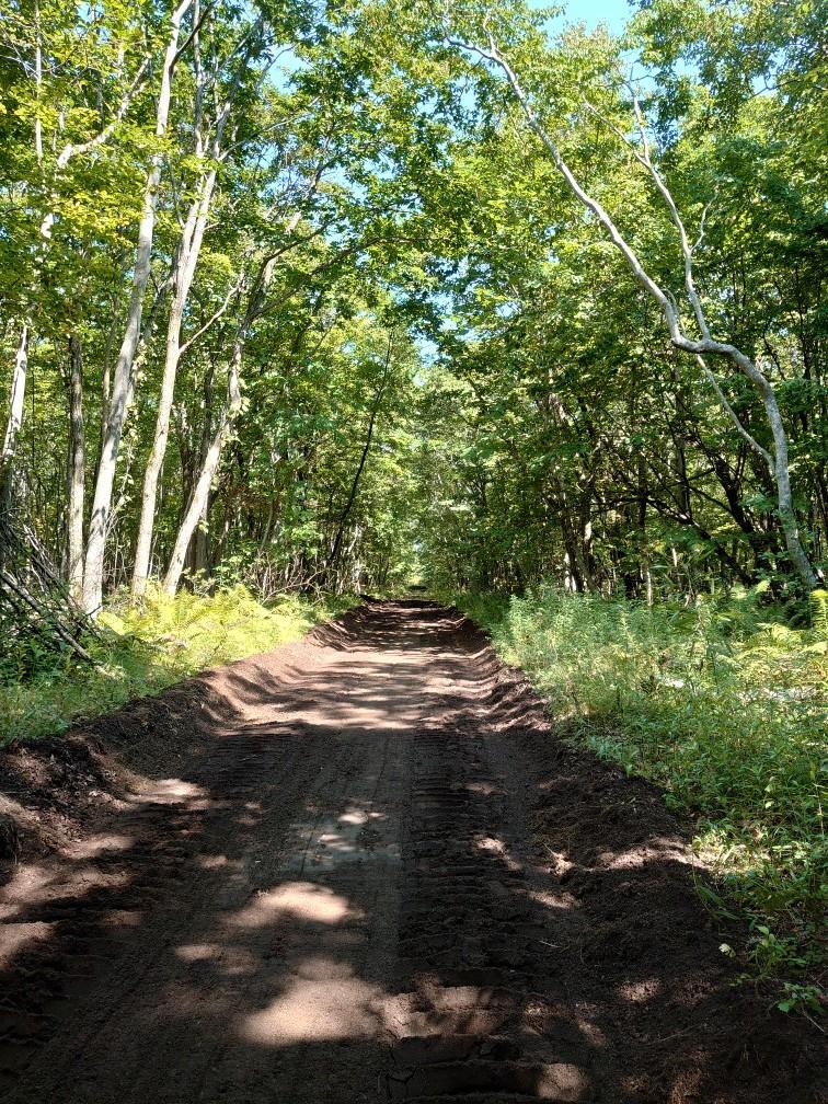 林間コースと桂コース_e0183255_00341993.jpg
