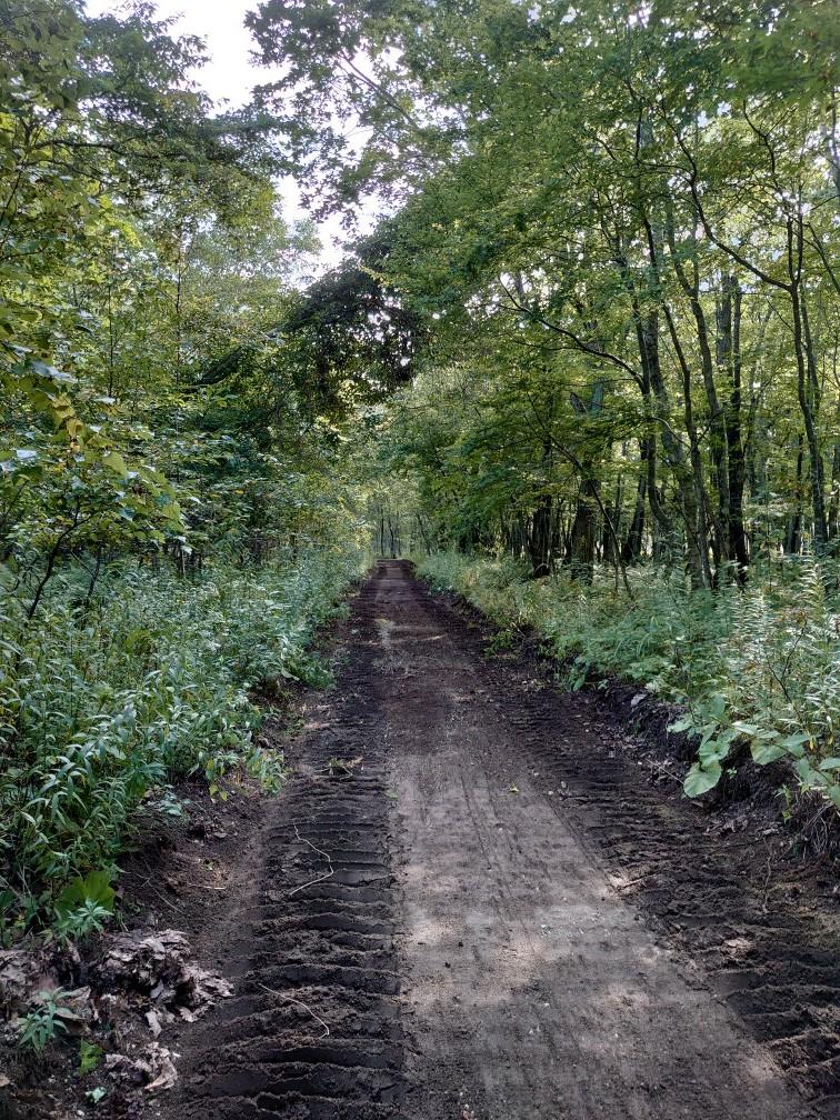 林間コースと桂コース_e0183255_00343508.jpg