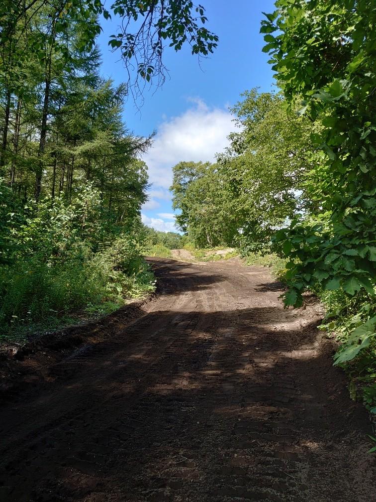 林間コースと桂コース_e0183255_00350757.jpg