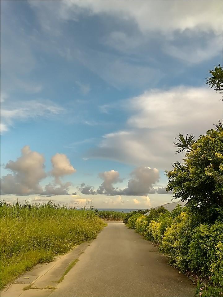 雲。虹。夕陽。夕焼け。_e0251855_19414704.jpg