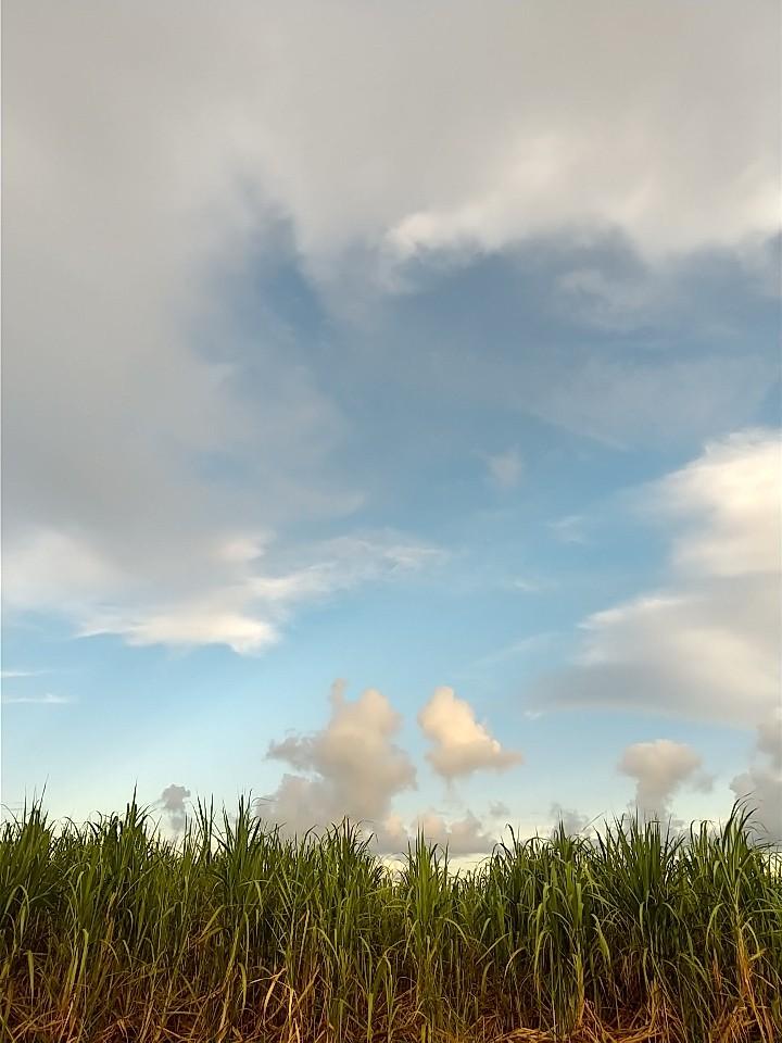 雲。虹。夕陽。夕焼け。_e0251855_19414711.jpg