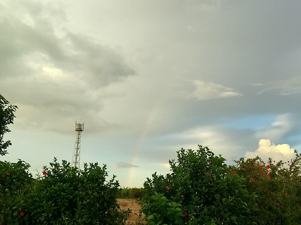 雲。虹。夕陽。夕焼け。_e0251855_19454455.jpg