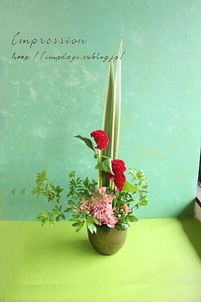 定期装花から ボンベイケイトウ:ナツコレッド_a0085317_18391344.jpg