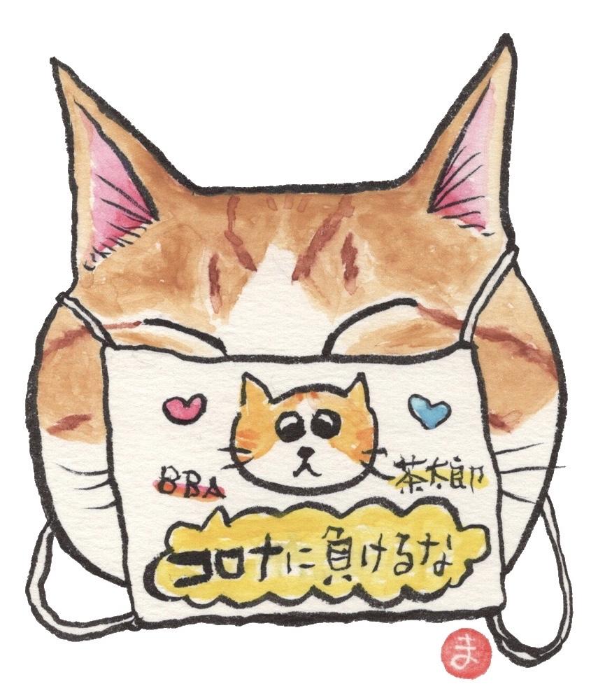 茶太郎くんと茶次郎くん マスク猫_f0375804_18352628.jpg