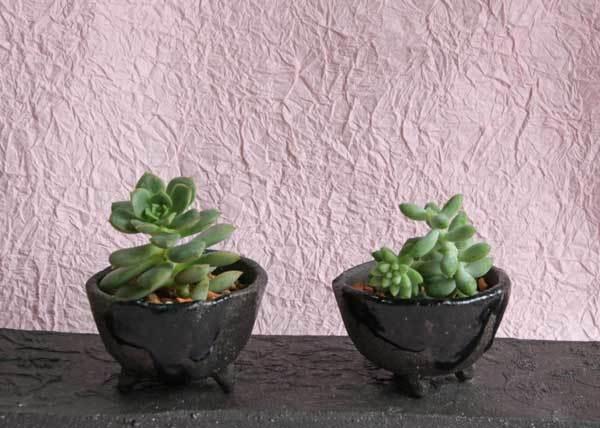 超ミニサイズの花器とミニ鉢と陶器の飾り棚_c0404426_12074269.jpg