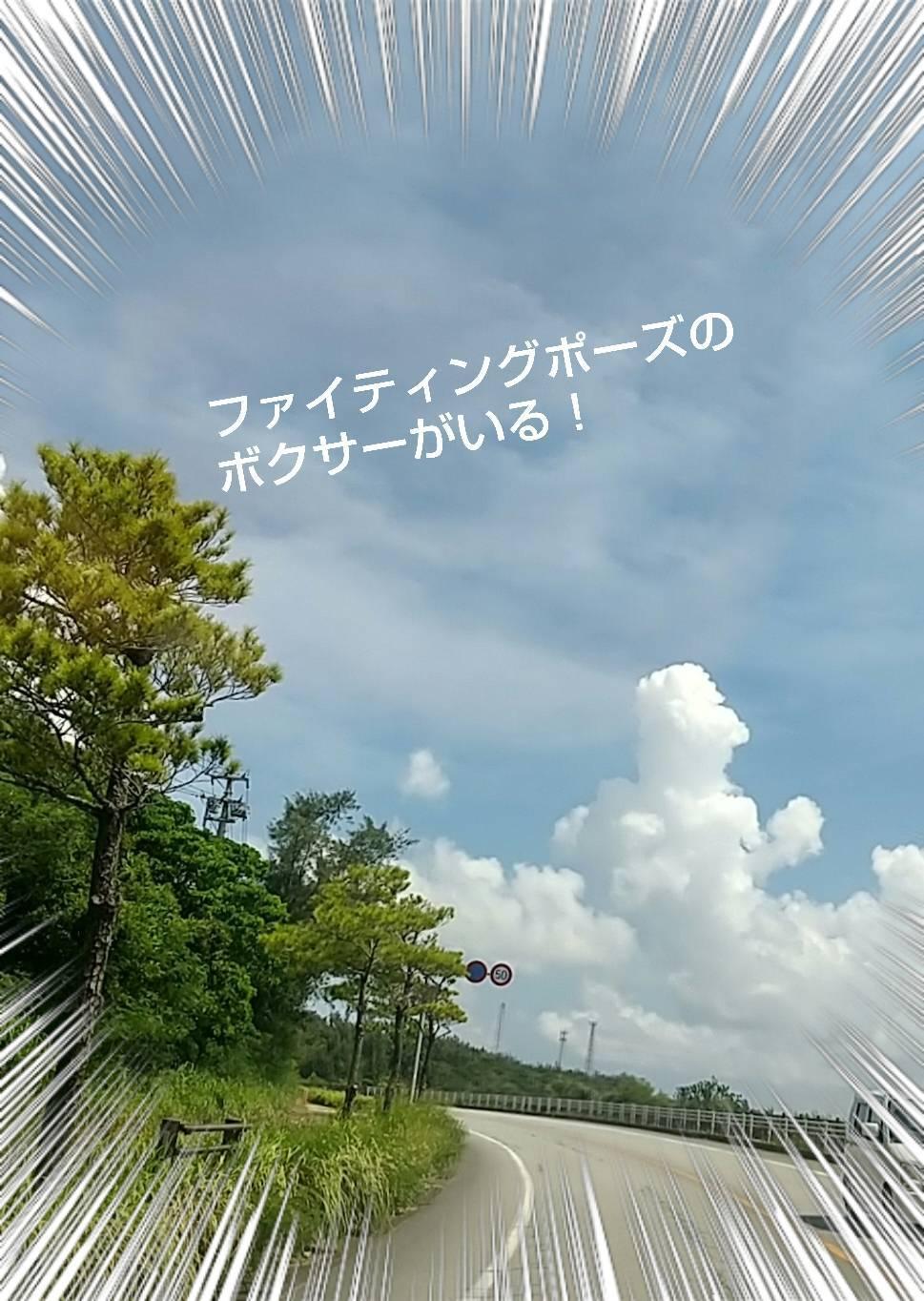 家守シーサー♪_e0251855_18535581.jpg
