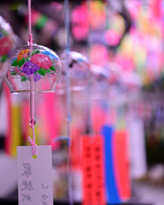 日本の夏の音_d0335768_19405631.jpg