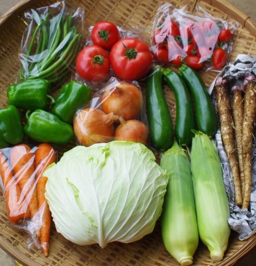 今週の野菜セット(9/7~9/11着)_c0110869_13301544.jpg