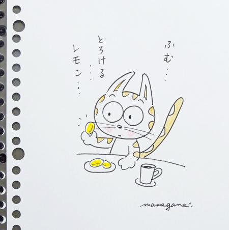 瀬戸内レモンクッキーと まぐ_f0364870_16542151.jpg