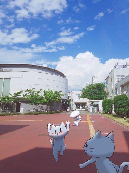 Twitter写真絵日記まとめ⑪_a0201203_15240744.jpg