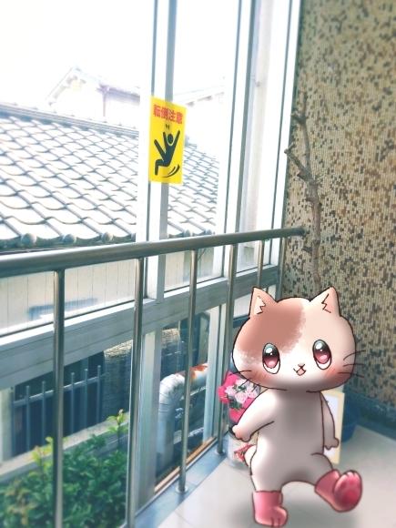 Twitter写真絵日記まとめ⑪_a0201203_15264607.jpg