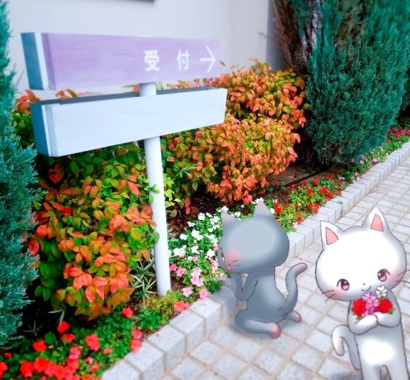 Twitter写真絵日記まとめ⑪_a0201203_15452897.jpg