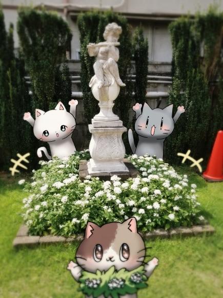 Twitter写真絵日記まとめ⑪_a0201203_15494064.jpg