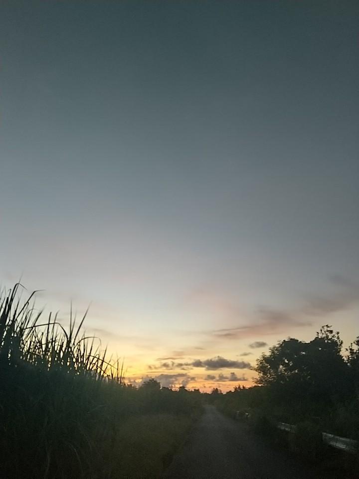 やさしい朝焼け。_e0251855_06335000.jpg