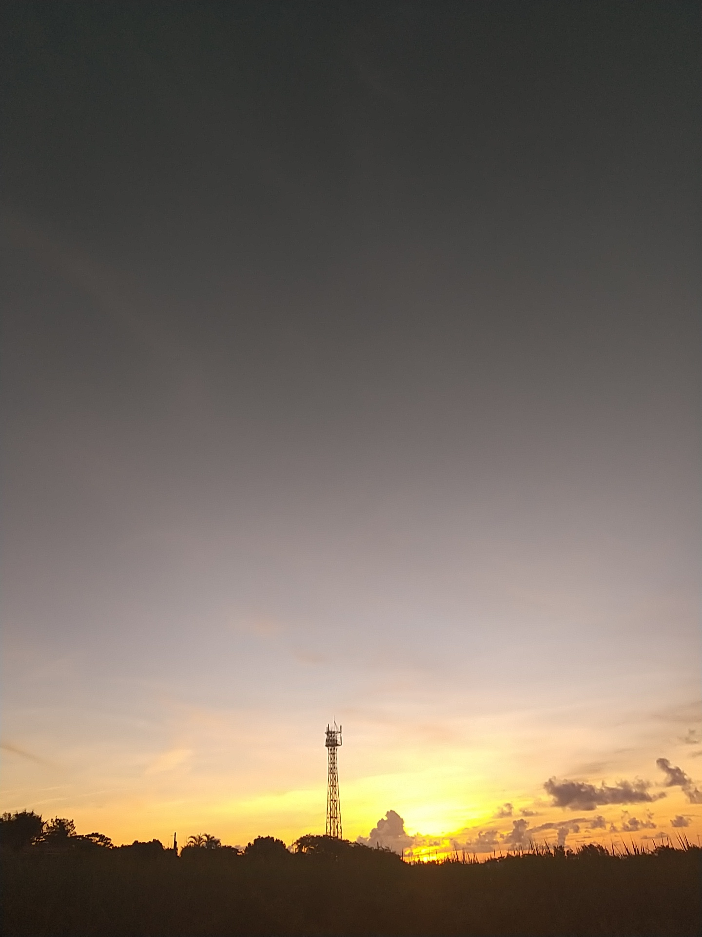 やさしい朝焼け。_e0251855_06353382.jpg