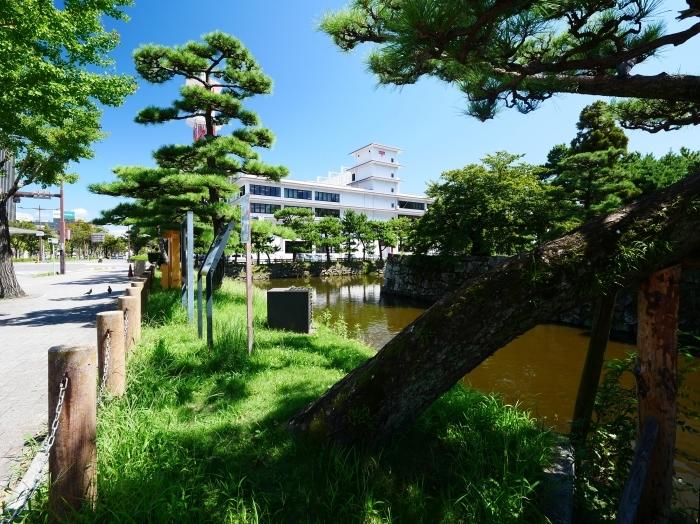 久しぶりの和歌山城  2021-09-10 00:00_b0093754_21410879.jpg