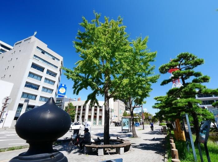 久しぶりの和歌山城  2021-09-10 00:00_b0093754_21411618.jpg