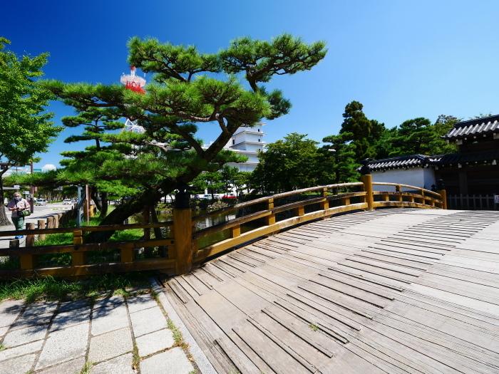 久しぶりの和歌山城  2021-09-10 00:00_b0093754_21413490.jpg