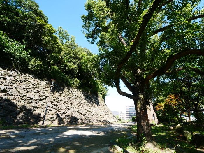 久しぶりの和歌山城  2021-09-12 00:00_b0093754_22224860.jpg