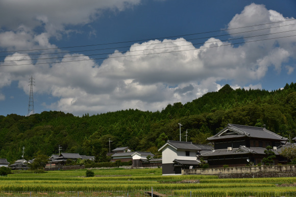 和歌山街道 隅田から高野口を行く_e0164563_12140730.jpg