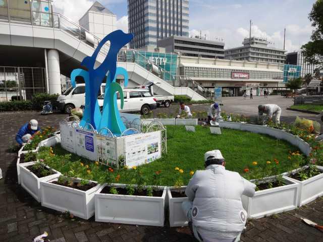 名古屋港水族館前のプランター花壇の植栽R3.9.7_d0338682_11040850.jpg