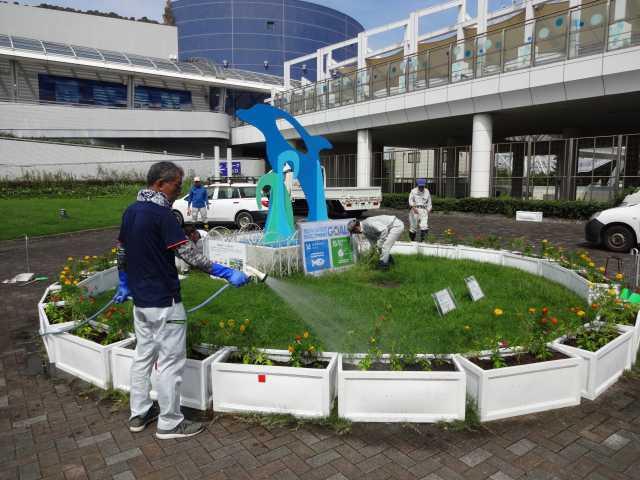 名古屋港水族館前のプランター花壇の植栽R3.9.7_d0338682_11111700.jpg