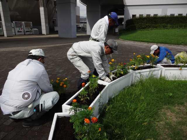 名古屋港水族館前のプランター花壇の植栽R3.9.7_d0338682_11223605.jpg