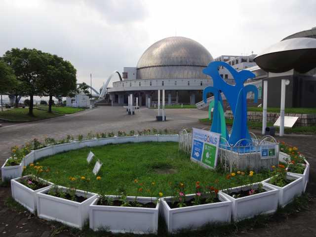 名古屋港水族館前のプランター花壇の植栽R3.9.7_d0338682_11255760.jpg