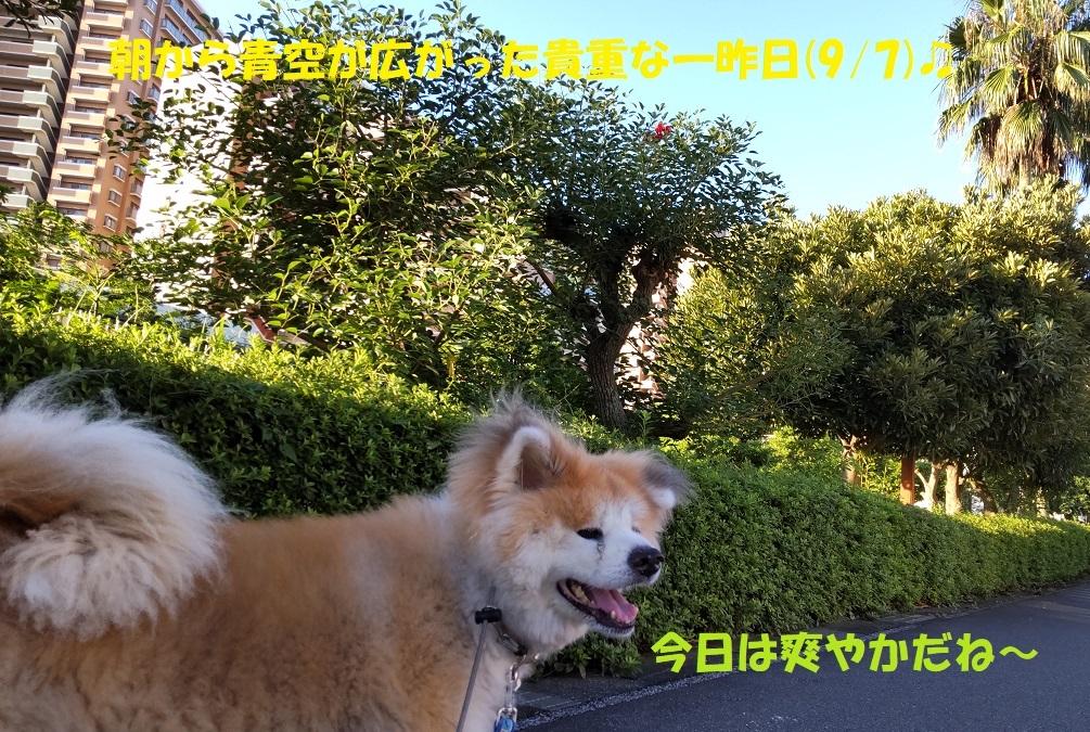 カユミとニオイの元凶発見!!_f0121712_12033101.jpg