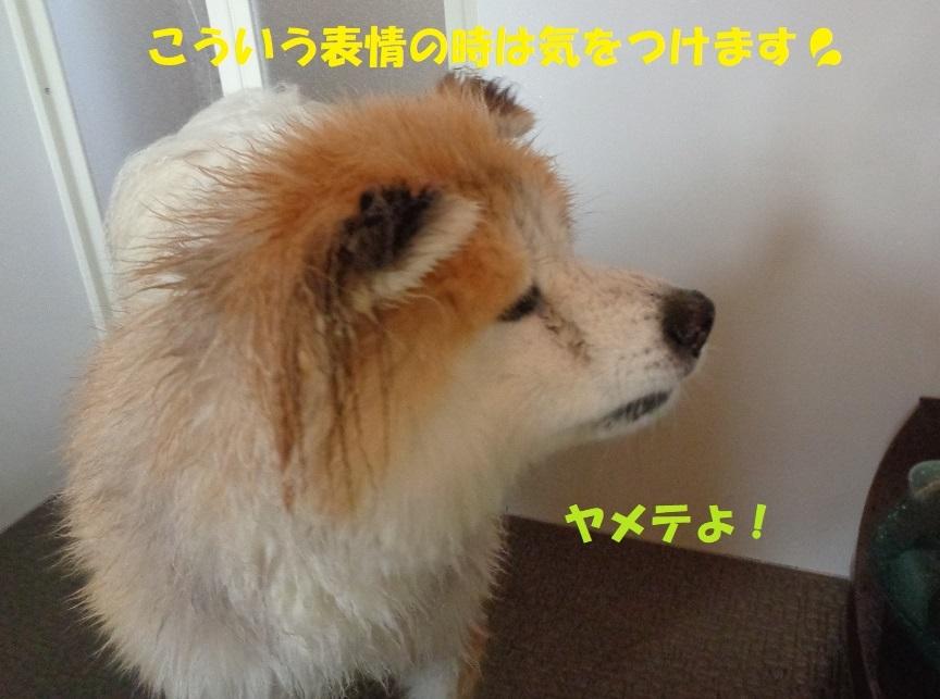 カユミとニオイの元凶発見!!_f0121712_12475802.jpg