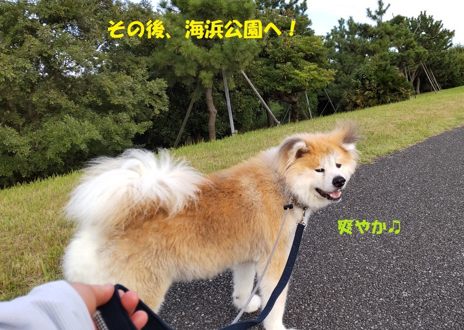 カユミとニオイの元凶発見!!_f0121712_14121817.jpg