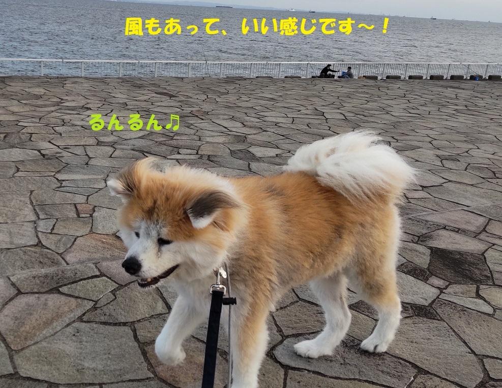 カユミとニオイの元凶発見!!_f0121712_14150202.jpg