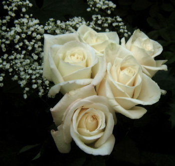 ★義母の葬儀へ★_a0383340_14115075.jpg