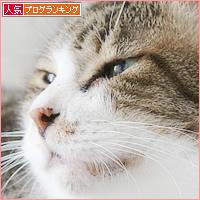 有難迷惑_a0389088_16581330.jpg