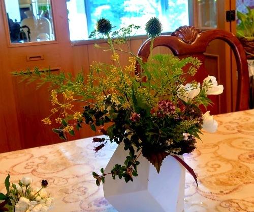806、白露、秋の庭に花ふたたび_e0323652_11595042.jpg