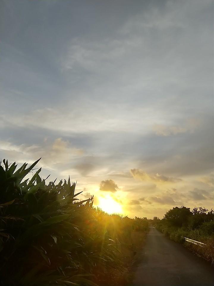 おはようございます。_e0251855_08571900.jpg