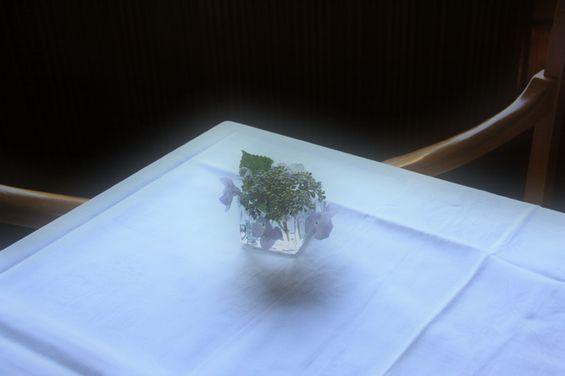 花を切る_e0131930_14580544.jpg