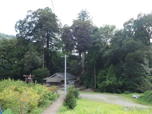 椎葉村へ その⑤_f0197985_15433652.jpg