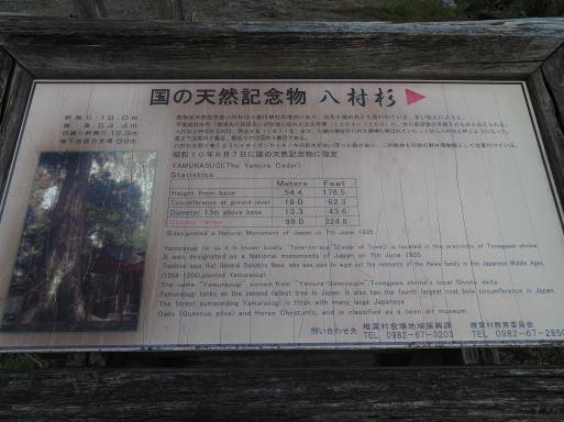椎葉村へ その⑤_f0197985_15511322.jpg