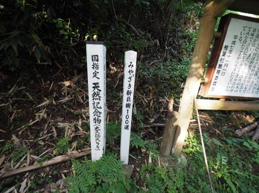 椎葉村へ その⑥_f0197985_16525019.jpg