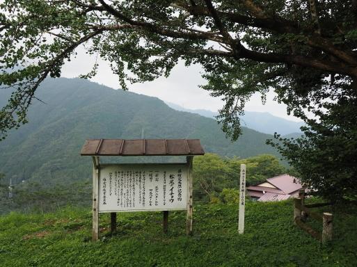 椎葉村へ その⑦_f0197985_17333718.jpg