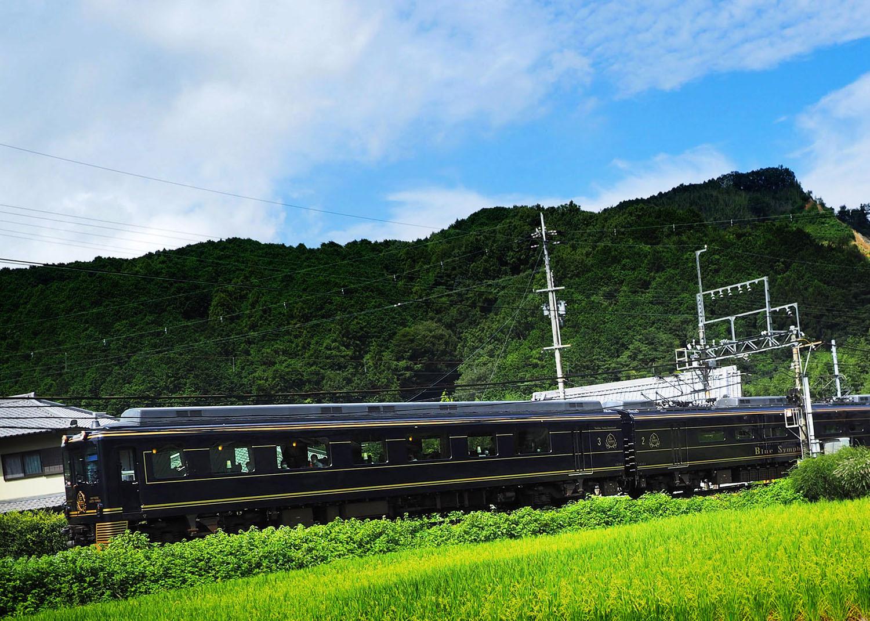 彼岸花電車_e0254493_09542982.jpg
