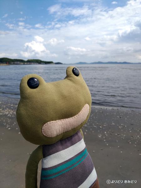 【ぬいぐる日和】久しぶりの海_b0044915_21445891.jpeg