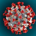 第6波以降を予測する - ワクチンの罠とウィズコロナの棄民牢獄_c0315619_15313024.png