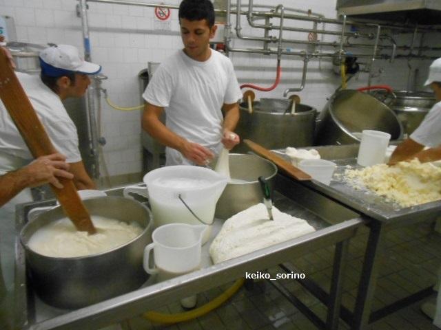 チーズ工房をパリで開業したい友人_b0305039_04465661.jpg