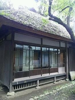 住宅の窓 世田谷(東京)_e0098739_17301876.jpg